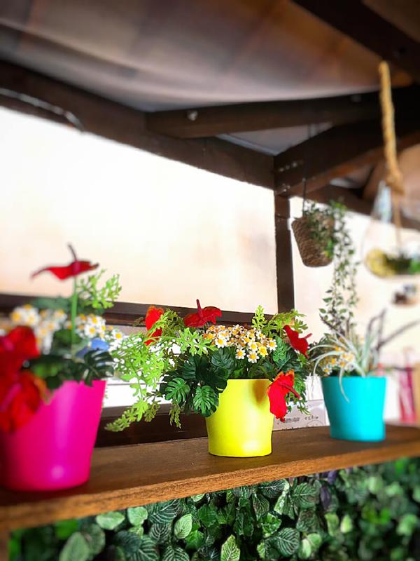 イロタス建築工房の棚に飾られた観葉植物